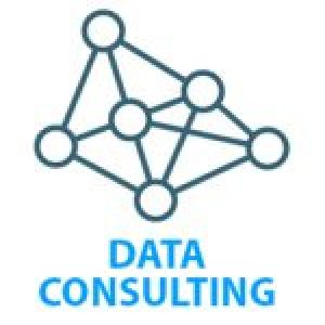 data Consulting